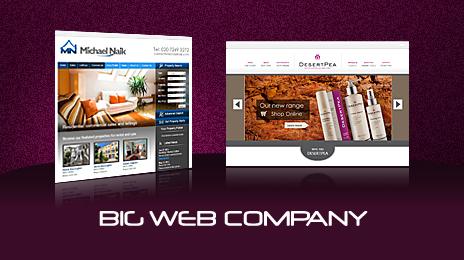 (c) Bigwebcompany.co.uk