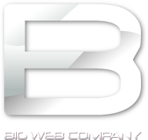 Big Web Company - The london business website design company