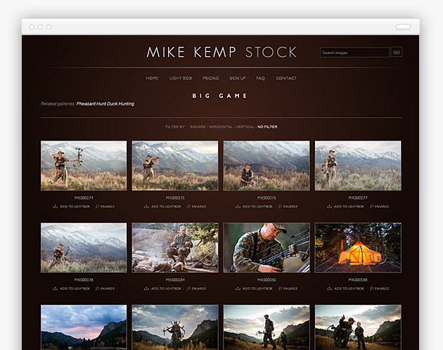 Mike Kemp Stock - Search Results